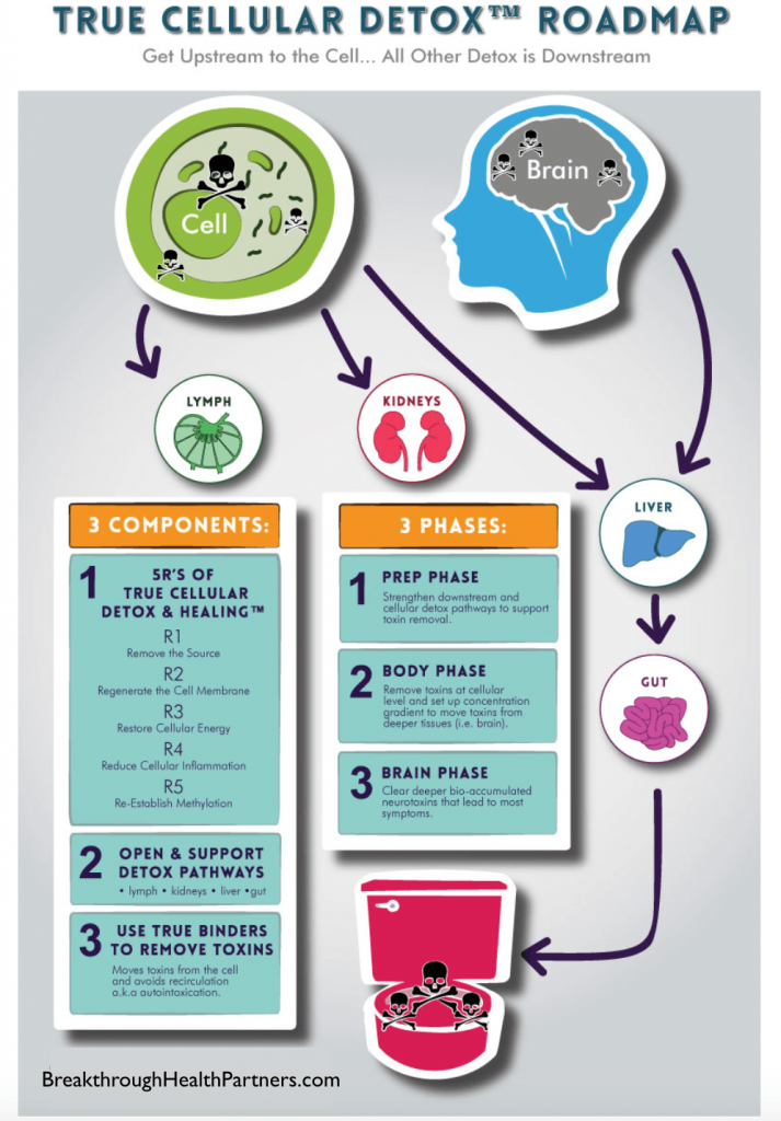 True Cellular Detox - Roadmap